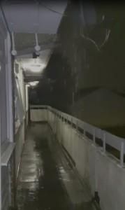 Abbots damp