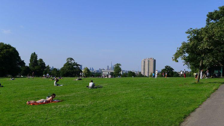 Herne_Hill_skyline